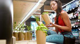 Woman buying a basil plant at a vegan shop.